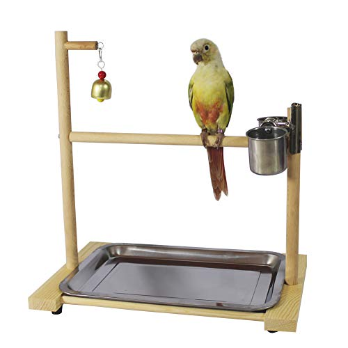 - QBLEEV Bird Playground,Birdcage Play Stands,Parrot Perch Playstand Tabletop Play Gyms with Feeder Cup Bowl Tray for Small Medium Conure Cockatiel Parakeet Finch Macaw