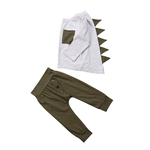 Infant Toddler Baby Boys Girls Dinosaur Outfits Long Sleeve T-Shirt Tops Pants Set Kids Clothes -