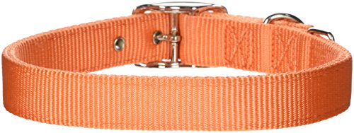Hamilton Thick Nylon Deluxe Dog Collar, 1-Inch by 24-Inch Double, Mango Orange