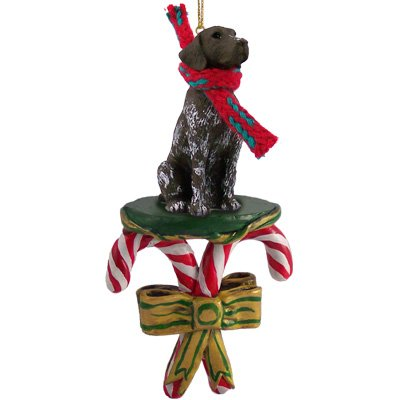 GERMAN SHORT HAIR Dog CANDY CANE New Resin Christmas Ornament DCC67