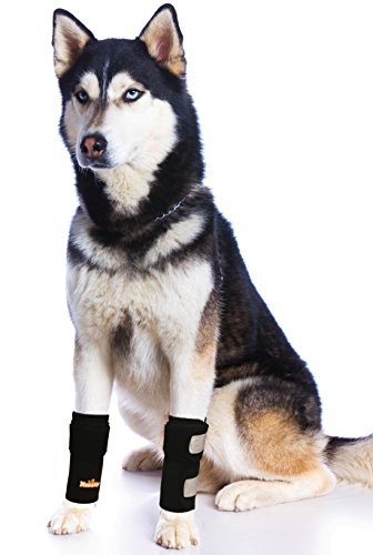 NeoAlly Dog Canine Front Leg Brace with Safety Reflective Straps, Compression Sleeves for Hock Joint Support, Injury Prevention, Wound Healing and Loss of Stability from Arthritis (Pair)