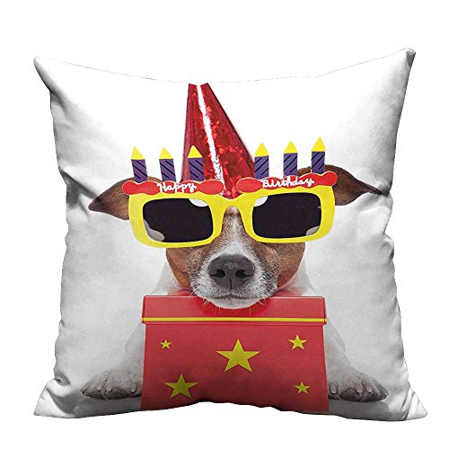 YouXianHome Home DecorCushion Covers for Kids Party Dog with Sunglasses and Cone Hat Boxes Stars Image Red Comfortable and Breathable(Double-Sided Printing) 16x16 inch