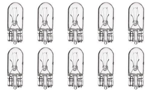 168 Bulb - 8