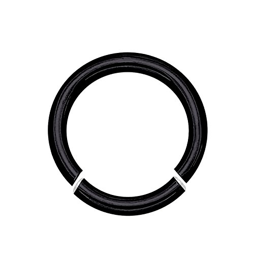 - Black Anodized Titanium Over Surgical Steel Seamless Segment Ring (8G 1/2
