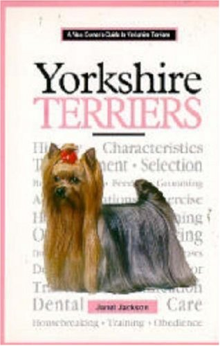 A New Owner's Guide to Yorkshire Terriers