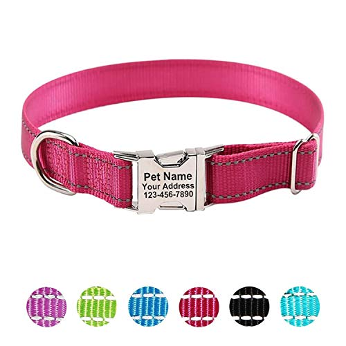 ZTZ Custom Laser Engraved Collar Personalized Dog Collar for Medium Dogs, with Special Text for Dogs (XS, S, M, L, XL)