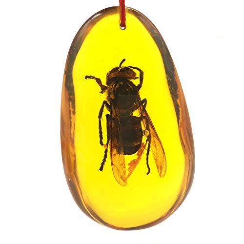 Artificial Yellow Amber Insect Specimens Paperweight for Home Decorations and Science Classroom Education(Not Natural Amber) (Bee)