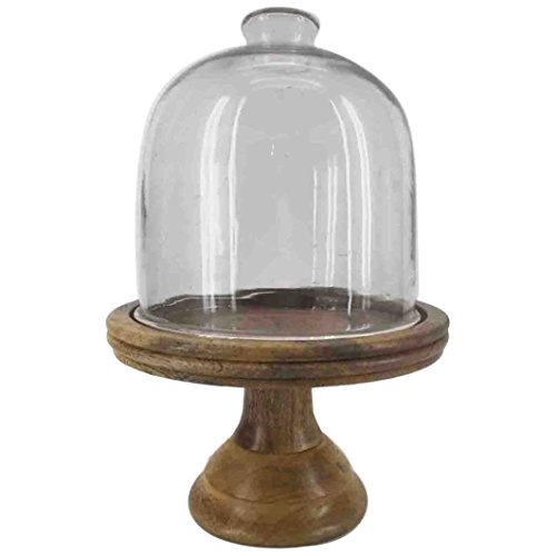 Urban Glass Domed Cake Display, dessert holder Plate w/ Mango Wood Base on a Stand 13