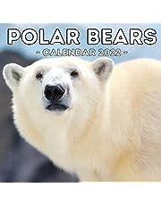Polar Bears Calendar 2022: 16-Month Calendar, Cute Gift Idea For Bear Lovers Women & Men