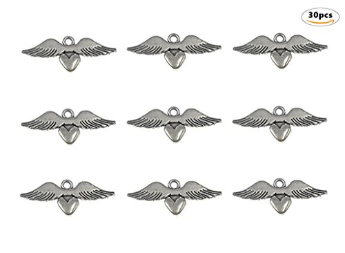 30pcs Loving Heart Angel Wing punk Charms Pendants for DIY Jewelry Making Accessories(Antique Silver) By (Making Angel Wings For Costume)