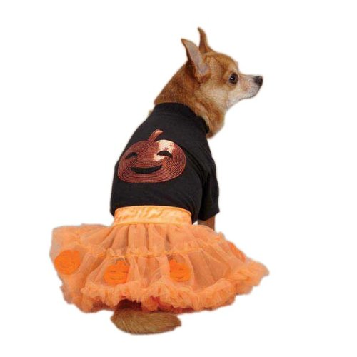 Halloween Costumes For Pets And Owners (Zack & Zoey Pumpkin Costume Set for Pets, Medium, Orange)