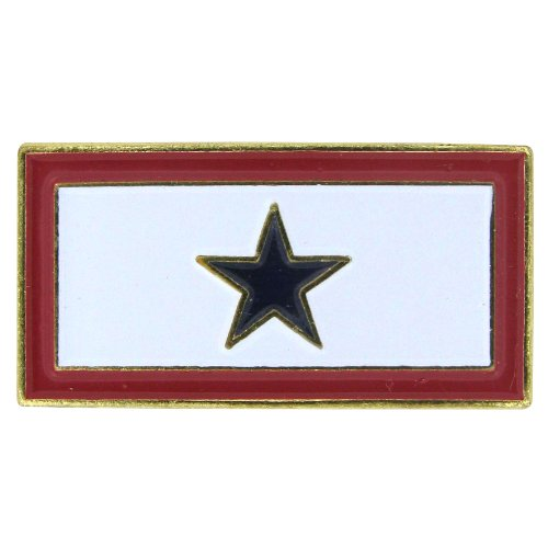 US Flag Store Service Blue Star Flag Lapel Pin