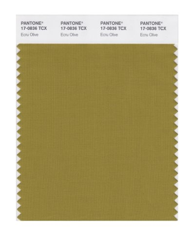 Ecru Olive - PANTONE Smart 17-0836X Color Swatch Card, Ecru Olive