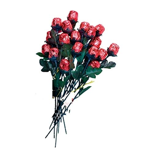 One Dozen Chocolate Red Roses - Solid Premium 9 1/2