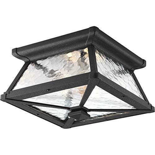 Progress Lighting P6023-31 Med Flush Mount, 2-100-watt