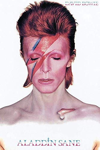 David Bowie - Aladdin Sane Poster 24 x 36in