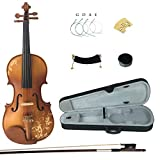 Kinglos 4/4 Flower Carved Ebony Fitted Solid Wood Violin Kit with Case, Shoulder Rest, Bow, Rosin, Extra Bridge and Strings Full Size (DH003)