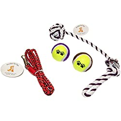 Everlast Pet Toys | Rope & Leash Bundle For Dogs | Knotted Ball Pull Rope | Dog Park Leash | Guaranteed | (2) 'Paw' Tennis Balls | Top Rated - #1 Seller | Large, Medium & Small Breeds of All Ages