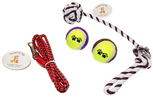 Everlast Pet Toys | Rope & Leash Bundle For Dogs | Knotte...