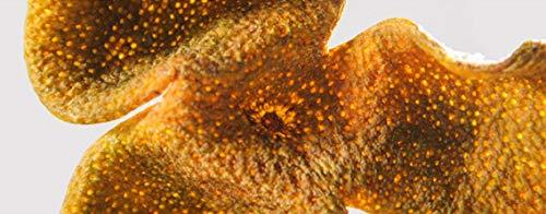 (OUZ123 3 Year Dried Citrus Xinhui Tangerine Peel 新会陈皮微红皮 50g/1.76oz)