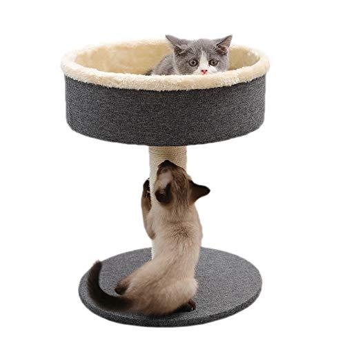Chunlan 2-lagiges Design Kratzbaum Klettern Plüschstoffe Sisal Katzen Kratzbaum Haustier Spielzeug Klein Becherform…