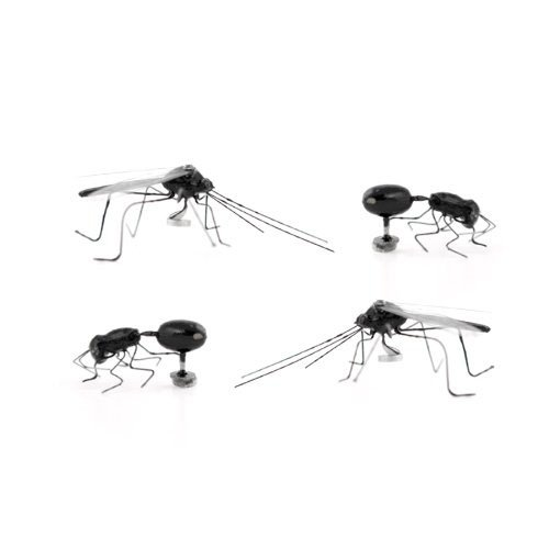 Kikkerland Insect Magnets, Set of 4 (MG35)
