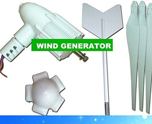 Gowe 500Watt weiß und Licht Gewicht Kleine Wind Wind Turbine Solar Generator System