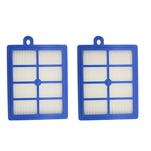 Ximoon 2 Pack Filter Replacements for Electrolux EL012W EL013W,Canister 6985 6988 6989 5010 & Eureka HEPA Filter, Part # H12 H13 HF12 HF1 60286A