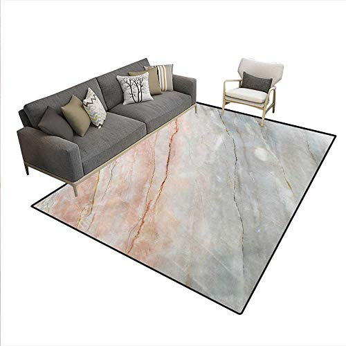 Carpet,Onyx Stone Textured Natural Featured Authentic Scratches Artful Illustration,Indoor Outdoor Rug,Peach Pale Grey,5'x6'