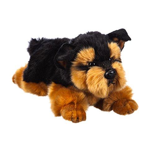 B. Boutique Yorkshire Terrier 12