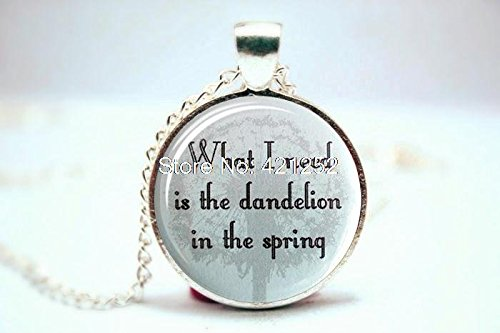 Pretty Lee 2015 Fashion Dandelion In The Spring Necklace Christmas gift