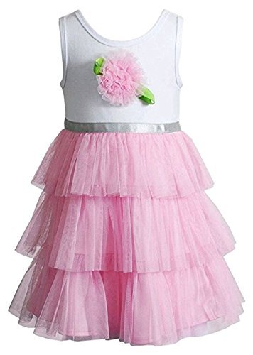 Youngland Baby/Toddler Girls Rosette Tulle Dress, Pink (24 (Pink Tulle Rosette)