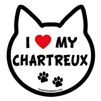 I Love My Chartreux cat head magnet