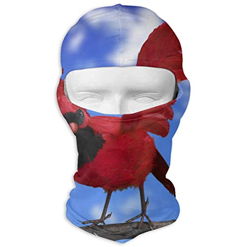 Balaclava Flying Red Bird Full Face Masks Ski Headcover Motorcycle Cycling Snowboard