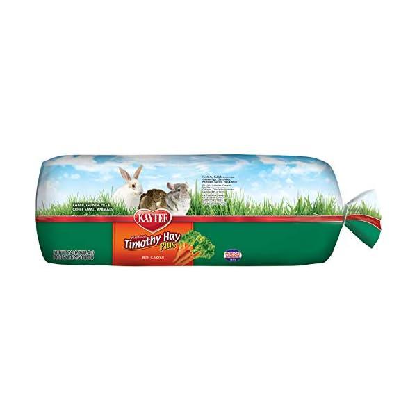 Kaytee Timothy Hay for Rabbits & Small Animals, Assorted Flavors, 24 oz Bag 7