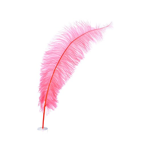 Zucker Feather Products OS-CO Ostrich Plume, 18-24