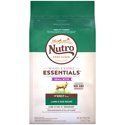 NUTRO WHOLESOME ESSENTIALS Small