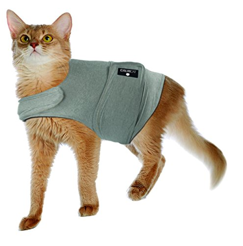 American Kennel Club Calm Cat Anti Anxiety and Stress Relief Coat for Cats - Large