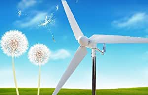 ALEKO® WG600 600W 600 Watt Residential Wind Generator Wind Turbine