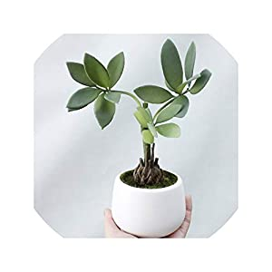 Artificial Rich Money Tree Decorated Plant with Flower Pot Home Wedding Decoration Artificial Narcissus Flowers Simulation,Green 71