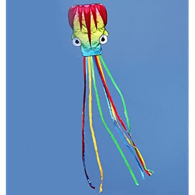Colorful 5M Octopus Foil Kite, Come with Handle & String, Beach Park Garden Playground Outdoor Fun: Toys & Games