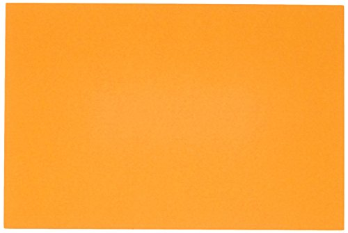 AmazonBasics Ruled Index Cards, Assorted Neon, 4x6-Inch, 300-Count Photo #4