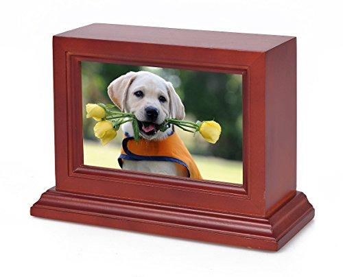Petmemorials4u Pet Cremation Urn, Photo Box Pet Memorial Urn, Dog Urn,Cat Urn,Small Animal Urn, Medium Size Cherry Wood Pet Memorial Urn, 50 cu.in