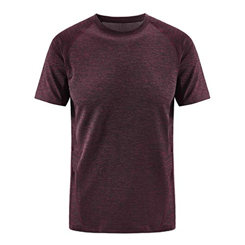 (KLGDA Men Classic Fit Short Sleeves Tshirt Training Quick Dry Athletic Tops Sportswear Training Tee Wine)