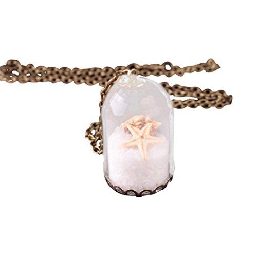 (Caopixx Women Pendant, Vintage Retro Hand Made Dandelion Dried Flower Plant Conch Necklace with Glass Cover (C,)