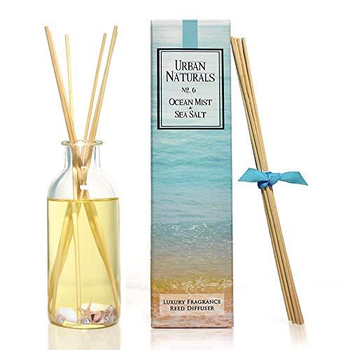 Urban Naturals Ocean Mist & Sea Salt Reed Diffuser | Decorated with Seashells! Beautiful Beach Themed Home Decor | Home Gift Idea