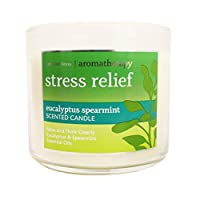 Deals on Aromatherapy Eucalyptus Spearmint 9-wick Candles