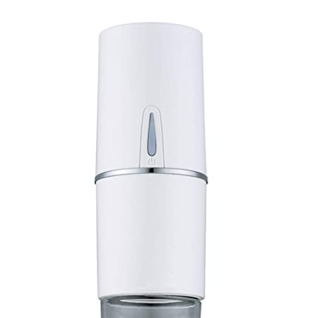Review BSJZ Car Air Purifier,