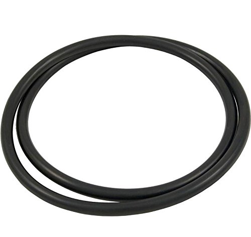 Hayward Star Clear Plus Pool Spa Filter Head Replacement Lid O-Ring O-240 - Plus O-ring Womens