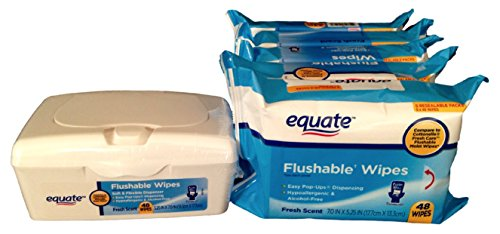 Equate Flushable Wipes (5) 48ct Packs with 48ct Pop-Up Refillable Dispenser (Combination 288 Wipes Total)